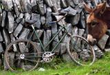 Ce vélo a une âme.