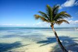 Caraïbes 2010