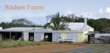 Bermuda: Wadson Farms