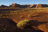 Desert near Lee's Ferry