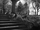 Steps and Cathedral