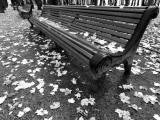 Park Bench 2 BW