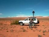 Don't stop birding in morocco - pajareo a tope en Marruecos