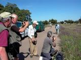 Birdwatching and Fotographing Group in Extremadura