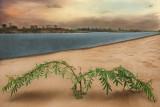 400 Islands a beach. dry season.