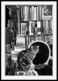 Librairie (3)Chatkespeare