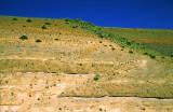(SG4) Reverse fault near Yakima, WA