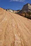 Rock Face - Zion National Park