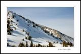 Snowy Hillside on Mt Rose Hwy