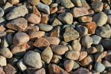 Paon pebbles