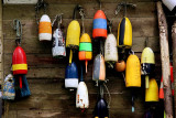 The Buoys in the Band