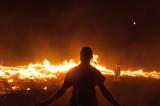 20110826_Burning_Man_2011_DHF_5553.jpg