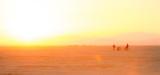 20120827_Burning_Man_DHF_1680.jpg