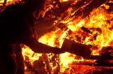 20100828_Burning_Man_2010_DHF_16037.jpg