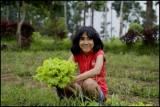 little_farmer