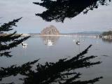 Moro Bay in Calif - Canon AE1.jpg