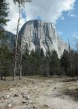 El Kapitan Yosemite Park in Calif - Minolta 7HI.jpg