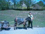 a farmer boy