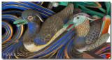 Nikko-ducks_1040088.jpg