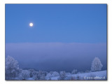 Vollmondnacht / full moonlit night (2575)