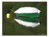 Fischerboot / fishing boat (1731)