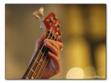 at the bass / am Bass