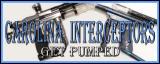 Carolina Interceptors Banner2.jpg