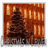 Leuven at Christmas Time