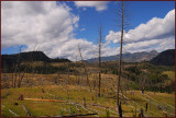 20- Yellowstone Park