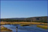 24- Fly fishing at Yellowstone National Park