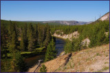 41- Yellowstone National Park
