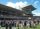 Randwick horse racing track