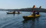 A kayak tour begins