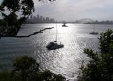 Sweet Sydney shot