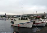 Brimland TN 46