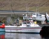 Áargarður II FD 1168