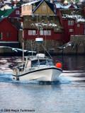 Magnus TN 1328