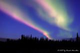 Alaska Expedition