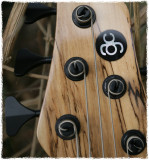 ACG Harlot S type bass