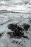 Swirly water(1)