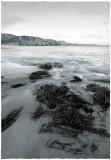Swirly water(2)