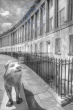 2289-Lion in the Crescent