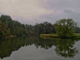 Morning stillness before the rain