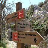 Biniaraix Mallorca 25.JPG