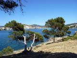 Santa Ponca Mallorca 03.JPG