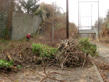 Winter Cleanup along the Cynwyd Heritage Trail