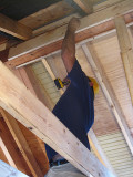 Raise high the roof beam, carpenters