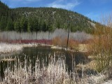 Layers of color Canoe Creek800.jpg