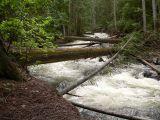 Spahats Creek2.jpg
