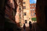 Heidelberg grounds